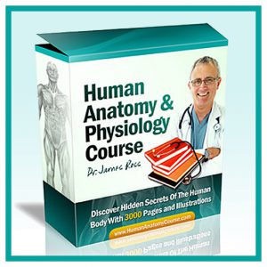Physiology Premium Course